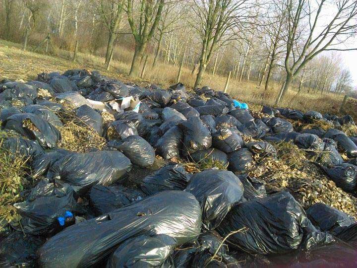 Nettoyage, recyclage et écotourisme autour du Lac Tisza en Hongrie (vidéo) By Jack35 Kisk%C3%B6re-z%C3%B6ldhullad%C3%A9kmez%C5%91
