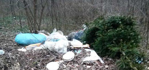 Prohászka Ottokár utcai kiserdőben hulladék