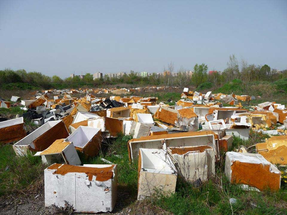 2016 áprilisában bontott hűtőtemetővé vált a Terebesi erdő!