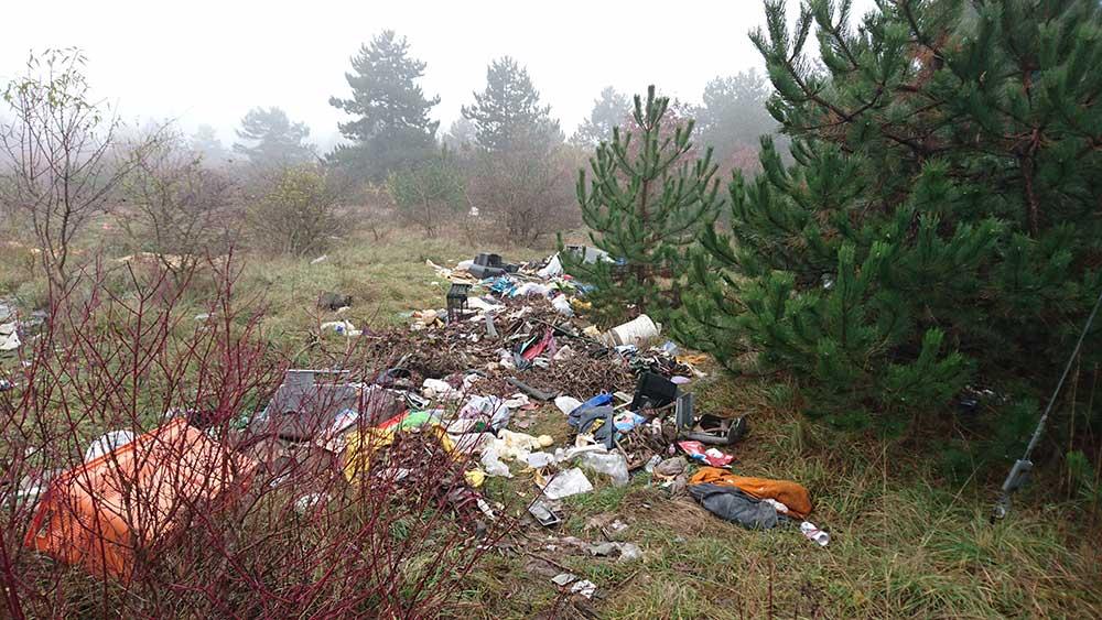 Az illegálisan lerakott hulladék nem csak a növényzetet, hanem az állatok életét is veszélyezteti. / Fotó: hulladekvadasz.hu