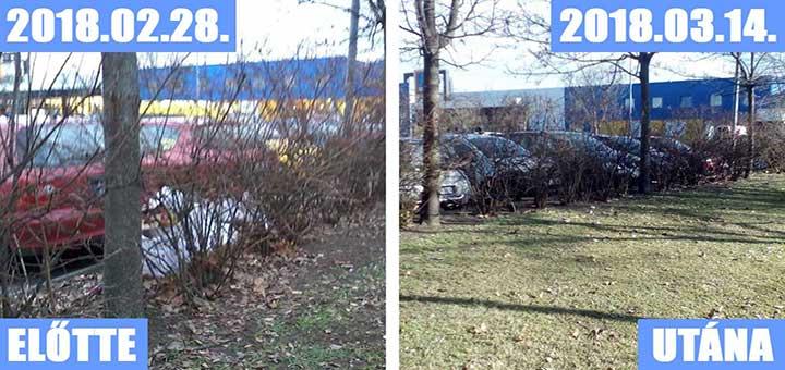 IKEA Árukiadó szemetes parkolója