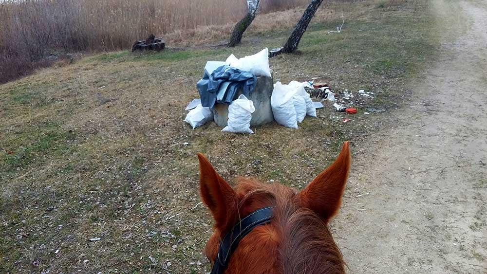Lovas hulladékvadászat Debrecenben. Ilyet se láttunk még :) / Fotó: hulladekvadasz.hu