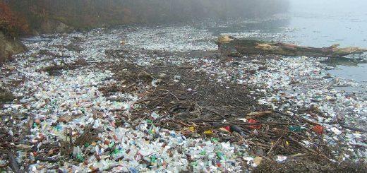 Műanyagszennyezés az Északi-sarkon is!