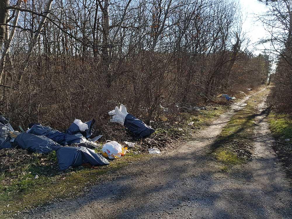 Zámoly határában kialakult kommunális hulladéklerakat. / Fotó: hulladekvadasz.hu