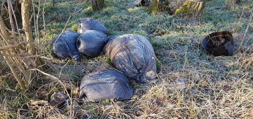 Székesfehérvár Hosszú Dűlő kommunális hulladéka