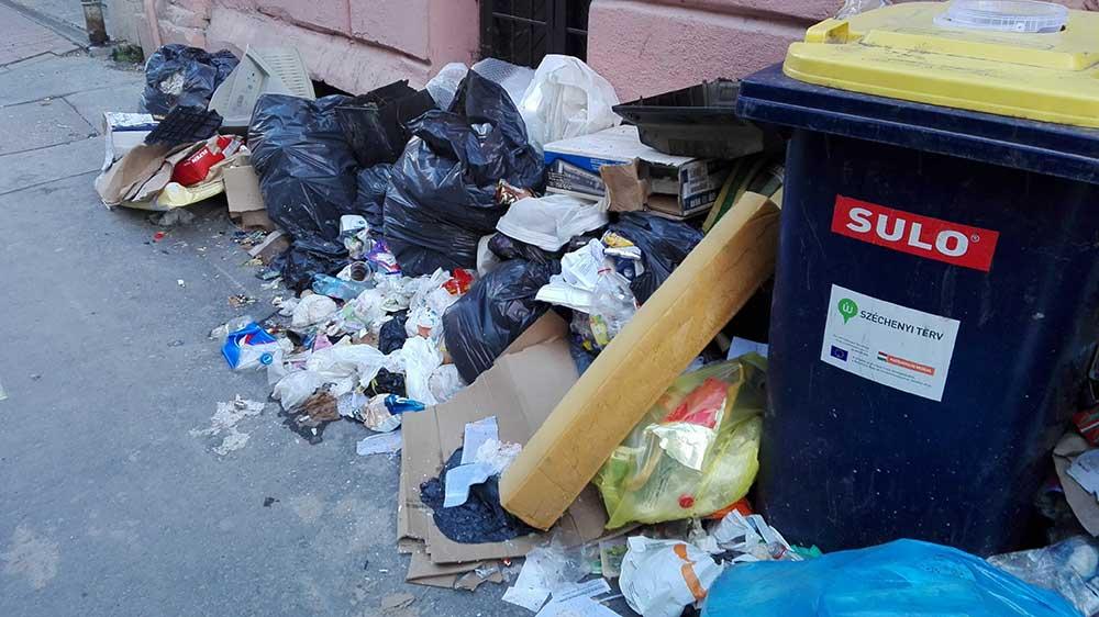 Szép mennyiségű szemét, főként kommunális hulladék gyűlt fel az utca ezen szakaszán. / Fotó: hulladekvadasz.hu