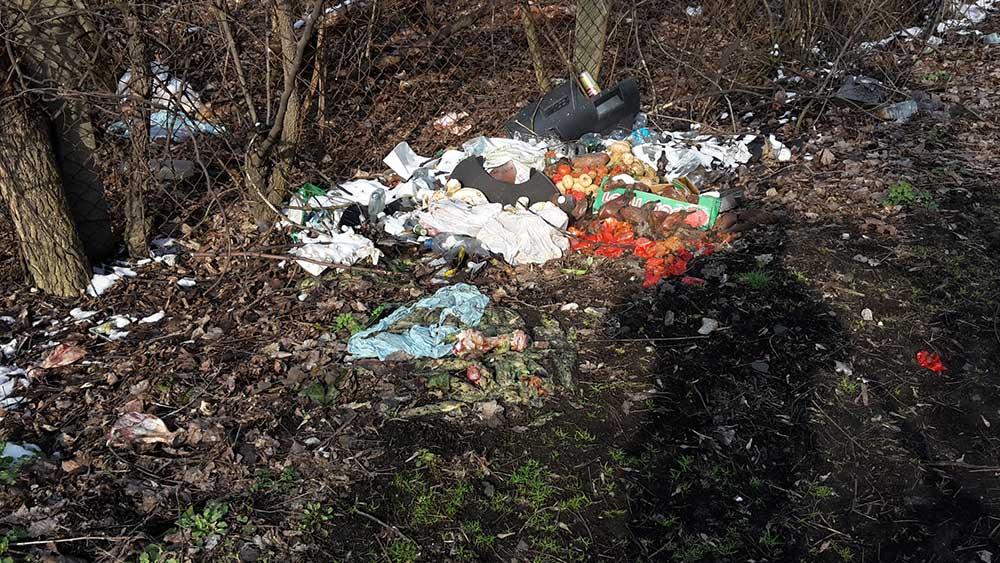 A véres húscafatok mellett még rohadó, kidobott zöldségek is találhatóak a helyszínen. / Fotó: hulladekvadasz.hu