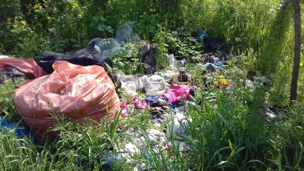 Főként kommunális hulladék lerakva a bozótosba. / Fotó: hulladekvadasz.hu