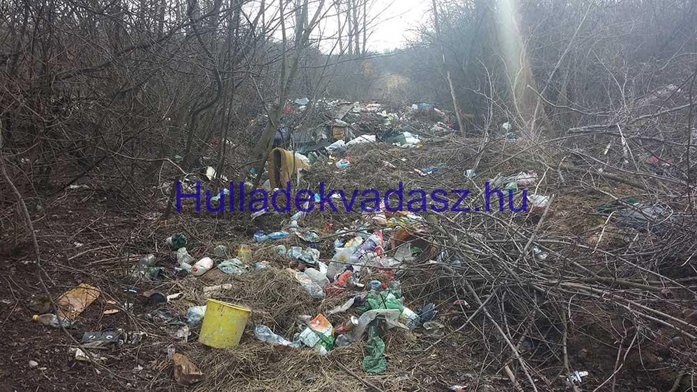 2016-os állapotok törökbálinti Idemajor főutcáján. / Fotó: hulladekvadasz.hu