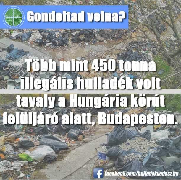 Igen, 450 tonna, mindössze egy év alatt! A terület megtisztításáról szóló beszámoló elérhető a képre kattintva.