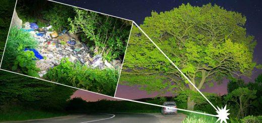 Mórágy fája alatti hányingerkeltő hulladéklerakat