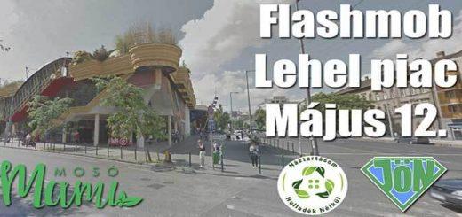 Vásárolj hulladék nélkül! - Lehel piac május 12.