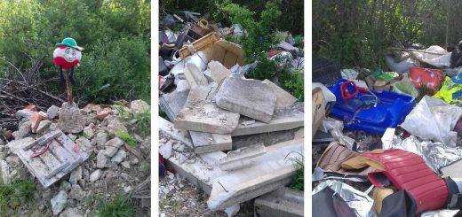Sárospatak külterületén hulladékparadicsom