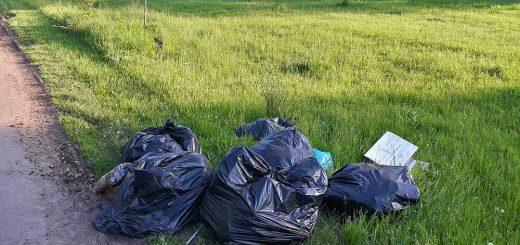 Hajdúszoboszlói rothadó konyhai hulladék