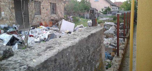 Isaszegi ingatlan telis-tele hulladékkal