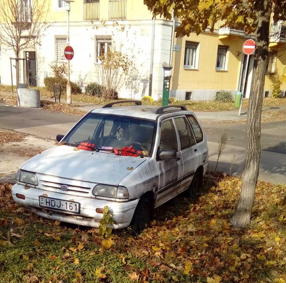 Ki tudja megszámolni hány darab büntetőcédula van az autó szélvédőjén? /  Fotó: hulladekvadasz.hu