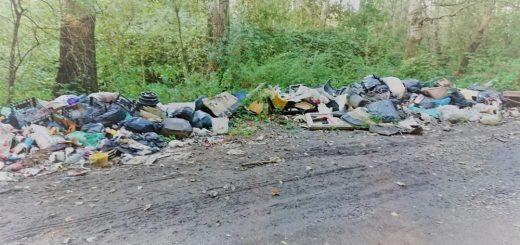 Solymár Szélhegy félreeső földútján hulladékkupac