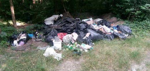 Homoktövis utca zöldjében hulladék Dunaharasztin