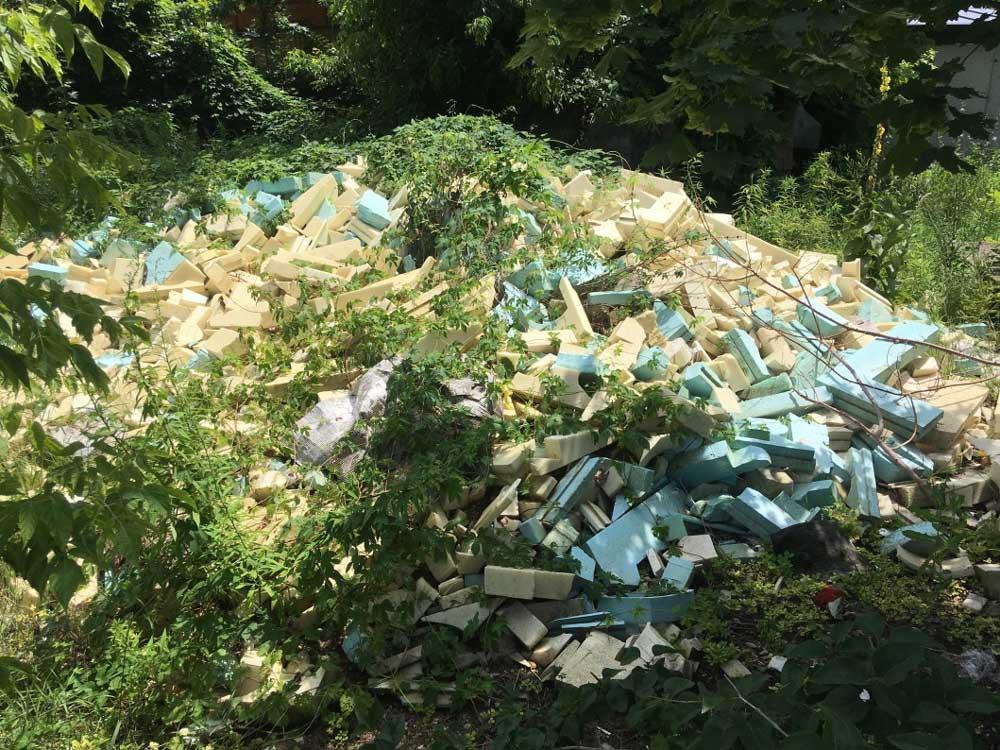 Amikor a természet szégyelli és igyekszik elrejteni az emberi tevékenység káros hatásait. / Fotó: hulladekvadasz.hu