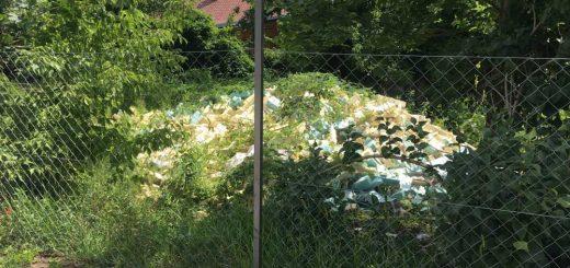 Kamionnyi szigetelőanyag mállik egy gödöllői magántelken