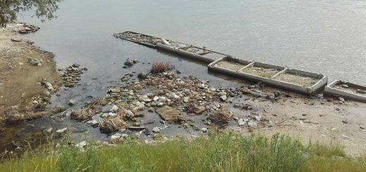 Szennyvíz szennyezés az Aranyhegyi-patak torkolatánál