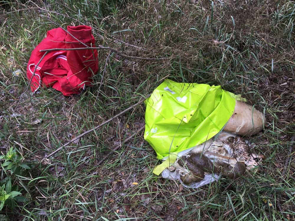 Egy birka levágásából maradt állati maradványok. / Fotó: hulladekvadasz.hu