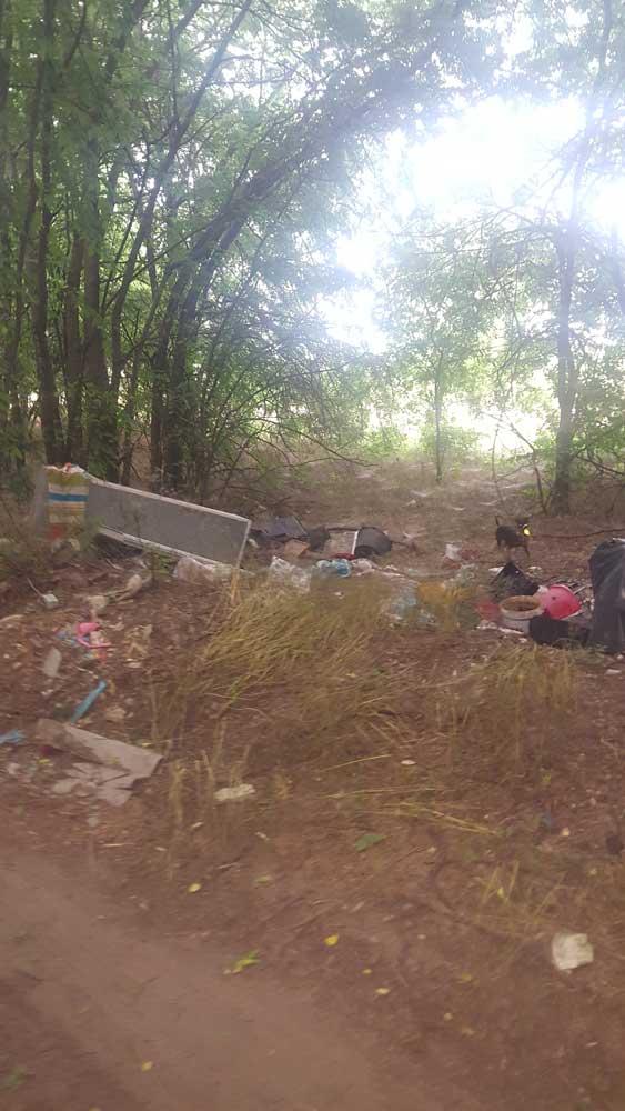 A képen egy helyi hulladékvadász kutya térképezi fel a szemétlerakatot. / Fotó: hulladekvadasz.hu