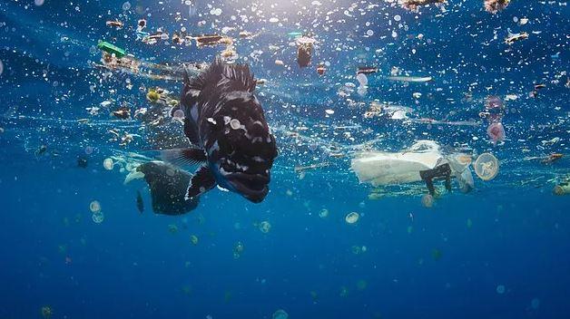 A kék bolygó sokak figyelmét felhívta a műanyagszennyezés veszélyeire / Fotó: Blue Planet