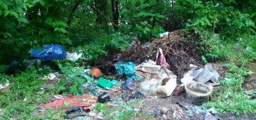 Ecseri dűlő hulladéka a Merzse mocsár közelében