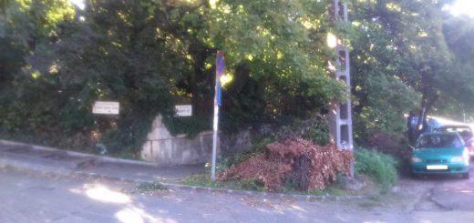 Határőr út visszatérő zöldhulladéka