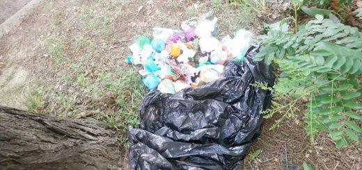 Somogyi út mellé hány kommunális hulladék