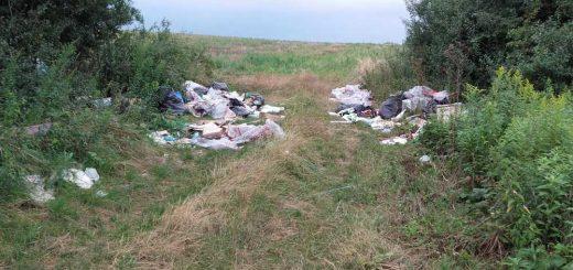 Illegális isaszegi hulladékdepó