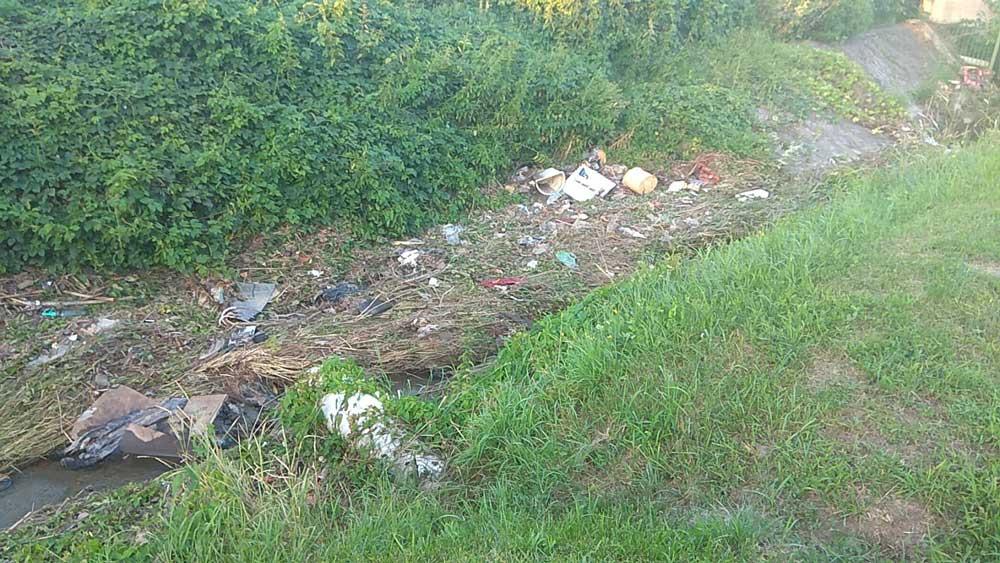 Az árok vízfolyása teljesen eltömörödött. / Fotó: hulladekvadasz.hu