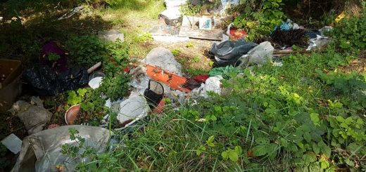 Szederfa sor végén illegális hulladék