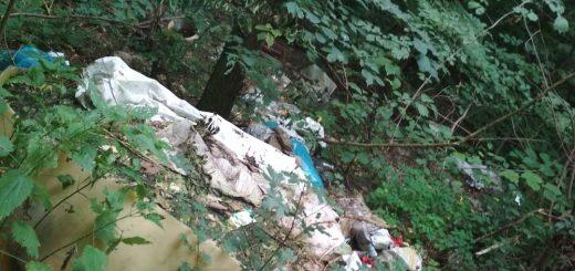 Szárligeti hulladékmező 1-es főút mellett