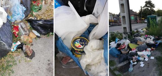 Rohadó hulladék a Nyári Pál utca szelektívénél