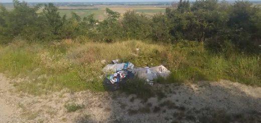 Szekszárdi erdei séta hulladékvadászattá vált