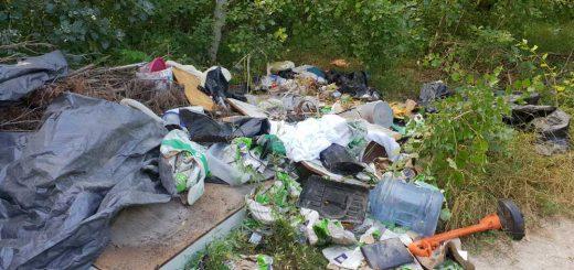 Szigetszentmiklósi HÉV vonala mellett trágyás hulladék