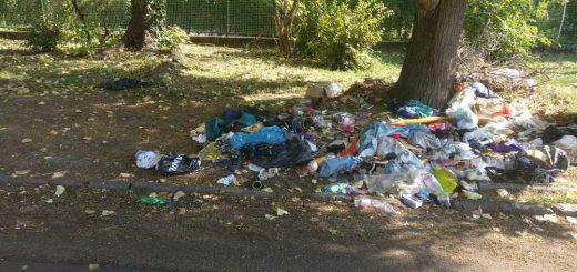 Zuglói Örökzöld Óvoda mellé hányt hulladék