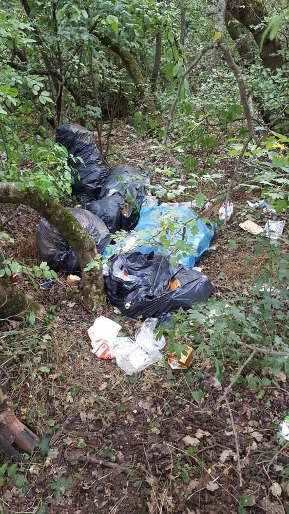 Kommunális hulladék szép mennyiségben az erdő lágy ölén. / Fotó: hulladekvadasz.hu