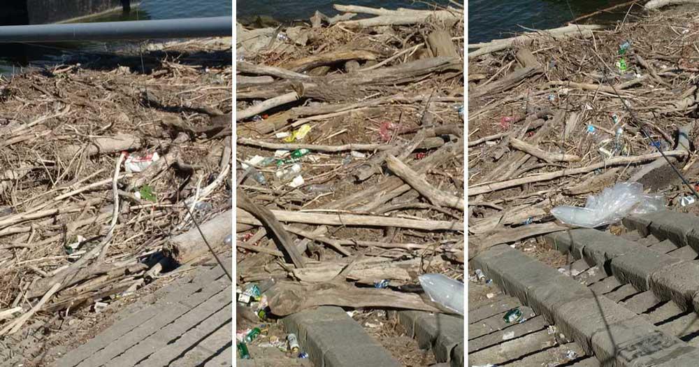 Eddig mindenki a Szabadság hídra figyelt, de senki se arra, hogy mi van alatta. / Fotó: hulladekvadasz.hu