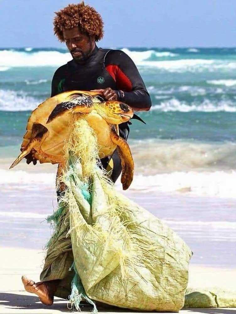 Horgászatból származó háló okozhatta volna a teknős halálát. / Fotó: facebook.com/ConociendoHonduras