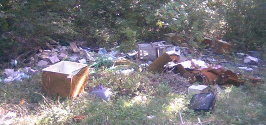 Pétfürdő erdejébe hordott hulladékrengeteg