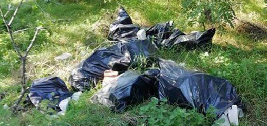 Zöld béka tanösvény mellé hordott fekete zsákok