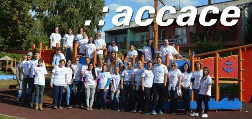 Accace Hungary Kft. és a társadalmi felelősségvállalás
