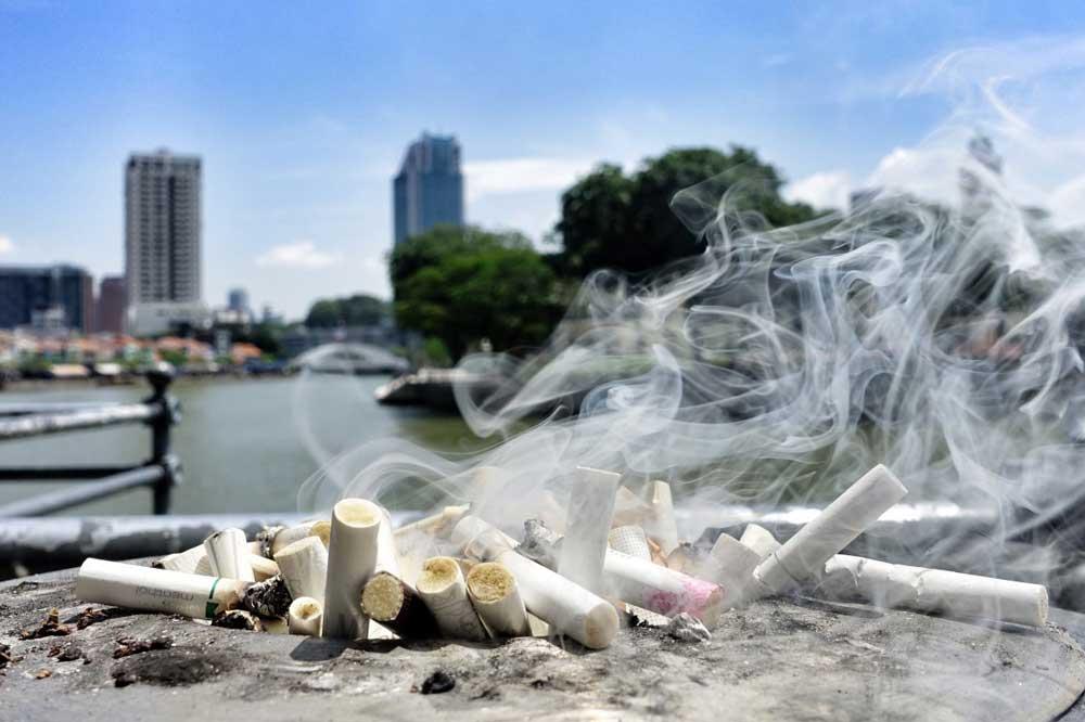 Cigicsikkek károsabbak a környezetre mint a szívószálak