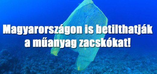 Műanyag zacskó sorsa: 2021-től betilthatják Hazánkban is