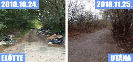 Brutális mennyiségű hulladék Ócsa határában