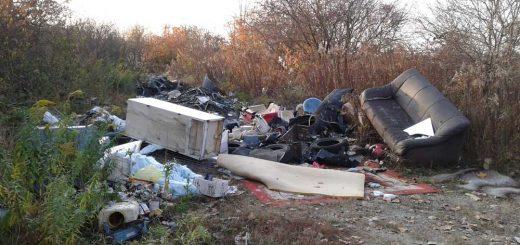 Komplett lakás hulladéka Gödöllő határában