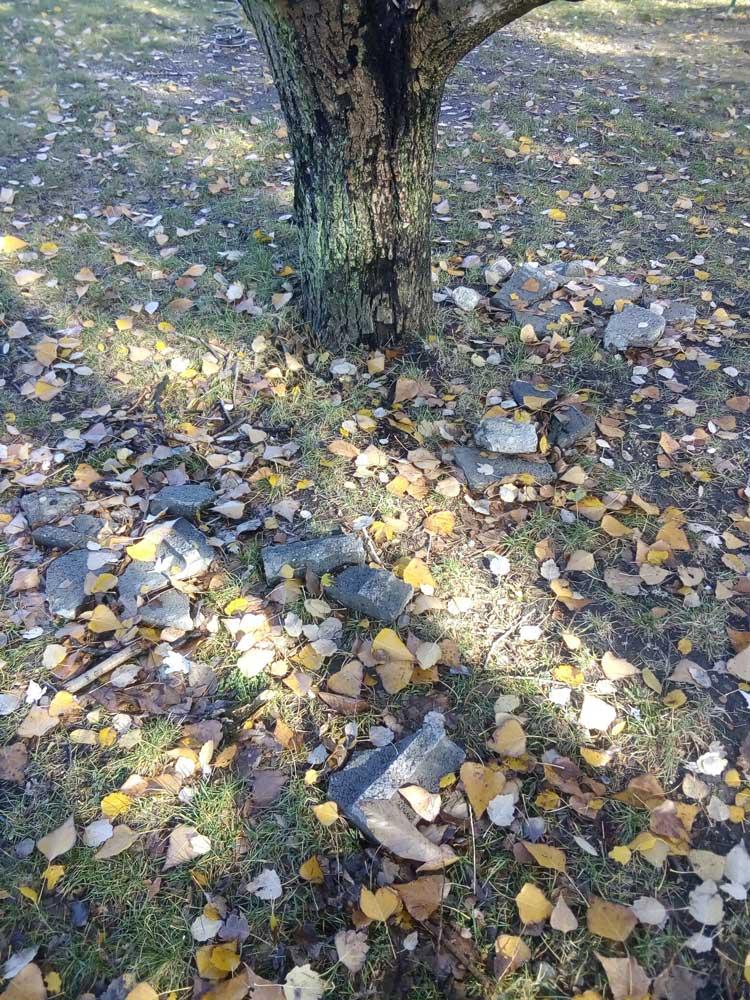 Ha a játszótéren játszik a gyermekünk és futás közben elbotlik a kövekben komolyan megütheti magát. - Aggódik a helyi bejelentő.